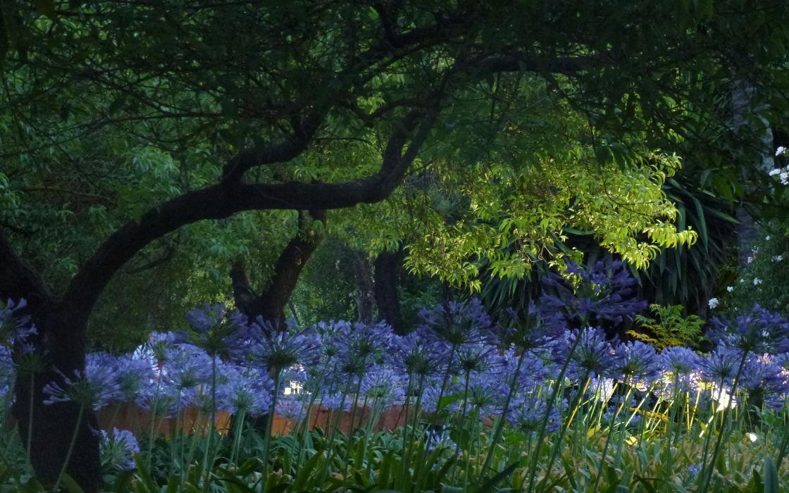 Noches en los jardines del real alc zar 2014 jard n del for Cenador de jardin