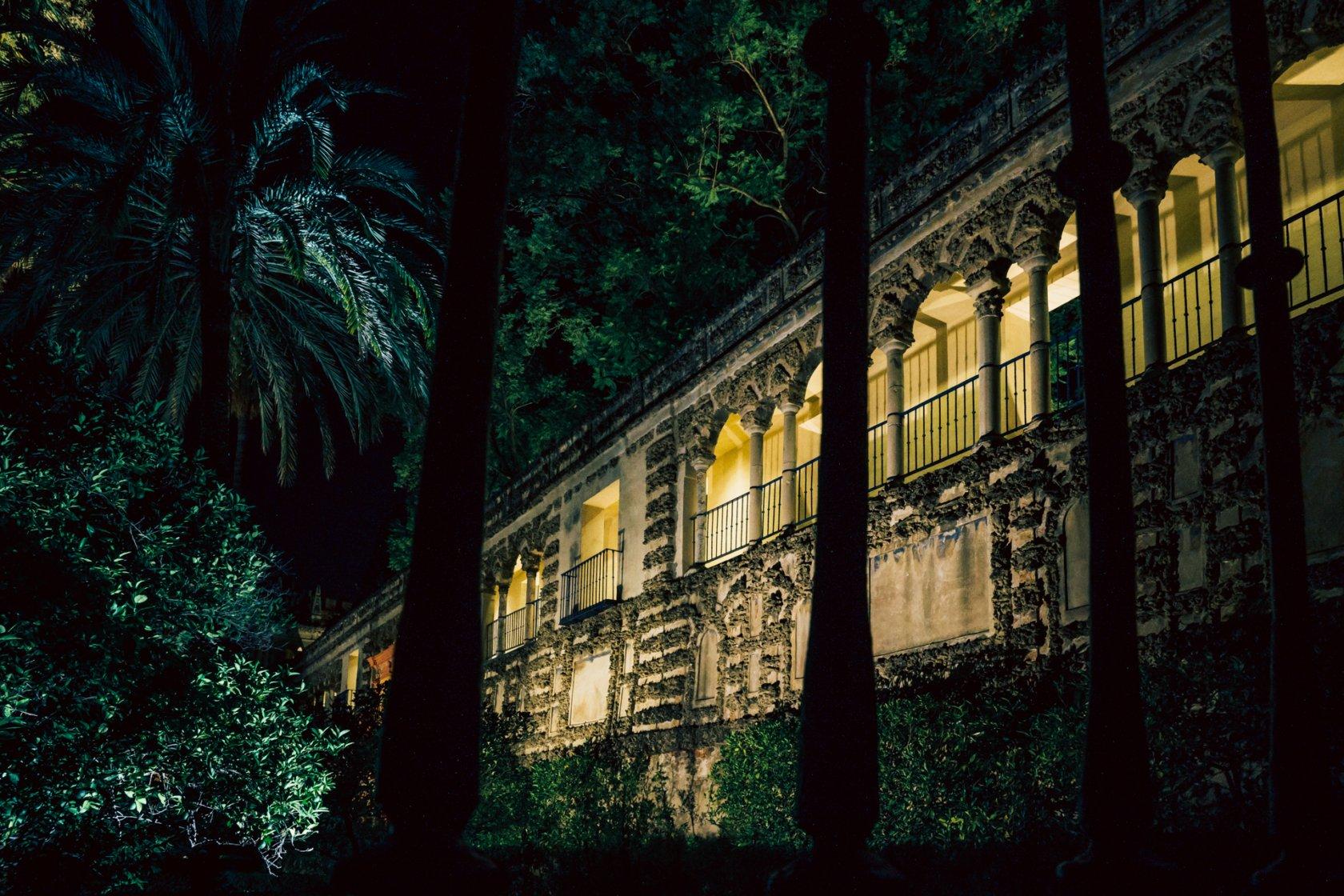 grutesco con palmeras visto a través de rejas